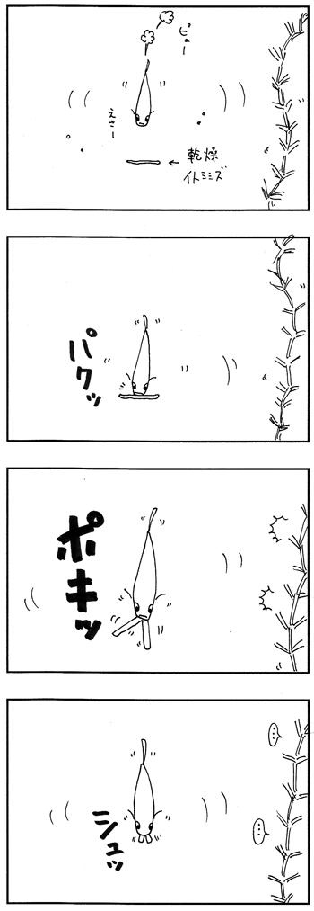 メダカの四コマ画像