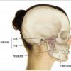 顎関節の痛みと口の中