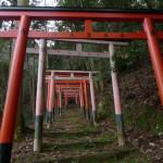 山科の巨石信仰神社が想像以上に聖地だった