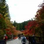 11月8日の横浜出張整体、予約受け付け中です