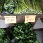 無農薬野菜、好評です