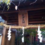 天津神社とおみくじ