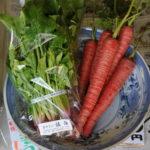無農薬野菜をおすすめする ★3つの理由★